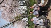 満開の桜の下で、仲良く記念写真。 桜も綺麗ですが、3名の方の笑顔も素敵です